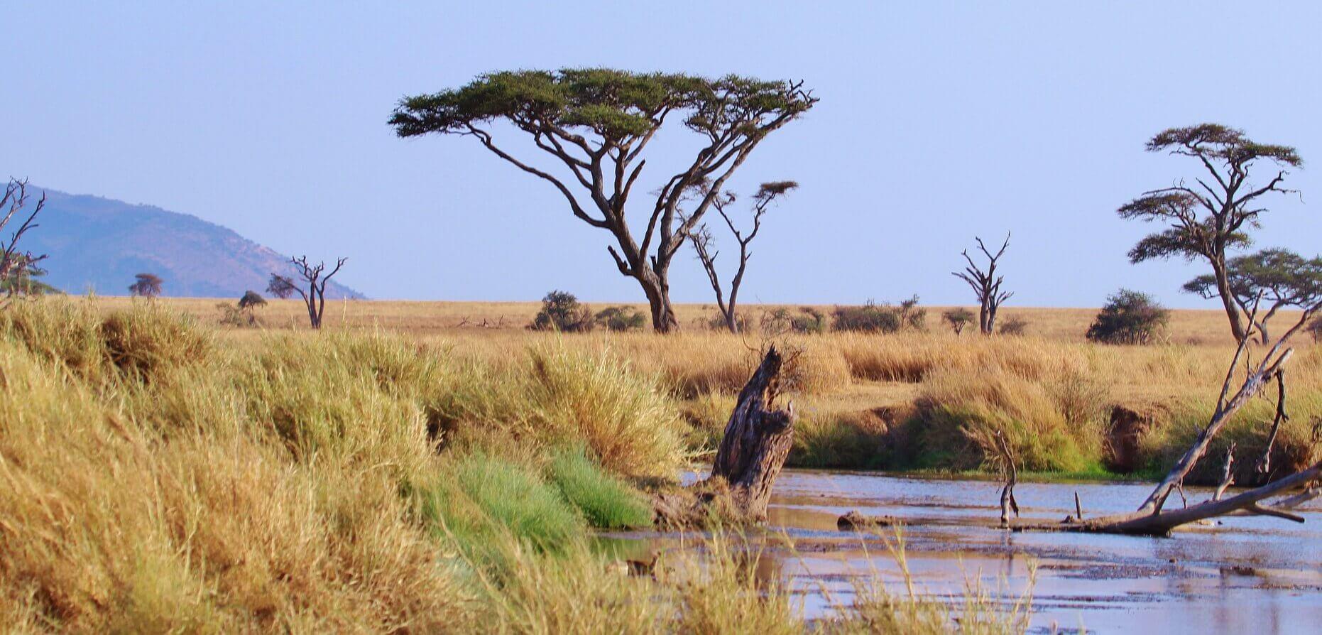 Tanzania - Country